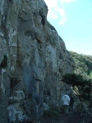 鵜戸崎千畳敷奇岩群へ降りる小道