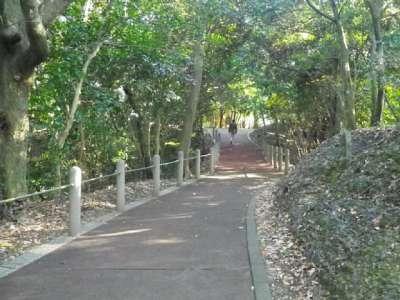 観音寺山公園