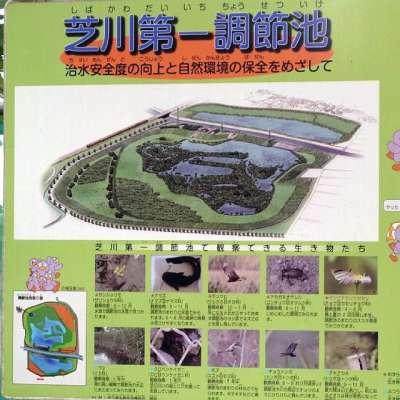 芝川第一調節池(埼玉県)
