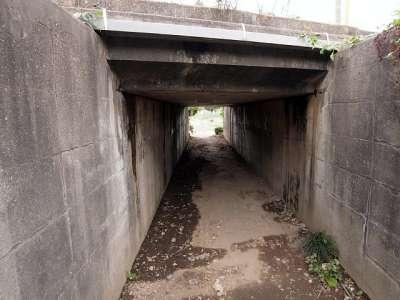 武蔵野線のマンボウトンネル