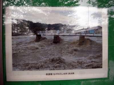羽村取水堰(投渡堰) 洪水時の様子