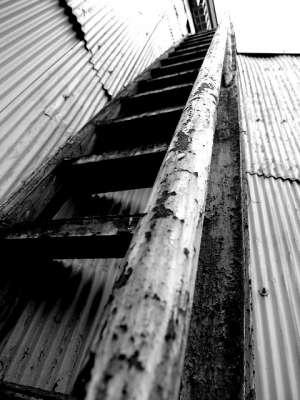 東洋シャーリング工業の階段