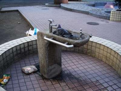 2007/02/24 芳林公園(改装前)(東京都千代田区)