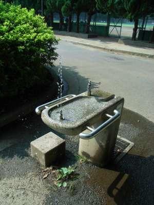 2007/08/04 赤塚公園(東京都板橋区)